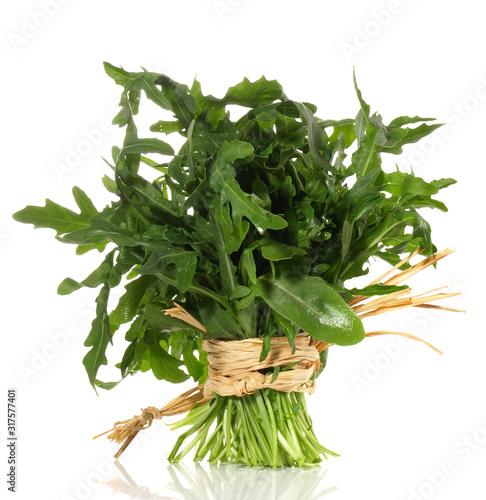 Fotografie, Obraz Ruccola Salat