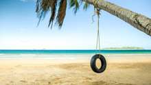 Swing On Palm On Paradise Nacp...