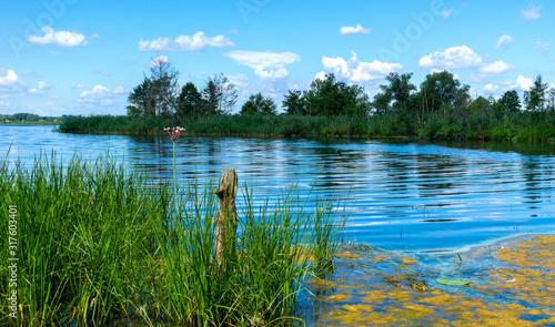male-jezioro-latem-na-obrzez