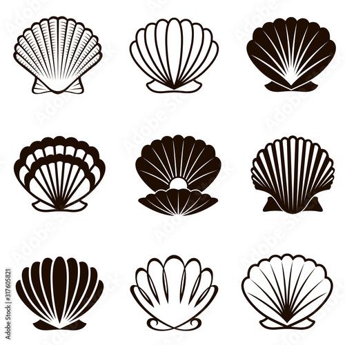 Valokuvatapetti monochrome collection of various seashells isolated on white background