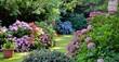 Leinwandbild Motiv Beautiful garden with hydrangeas in Brittany