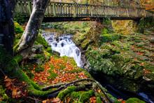 Cascades Under Wooden Bridge O...
