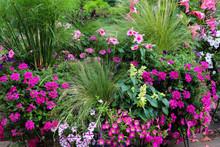 Gardenscape Incorporating Hot ...