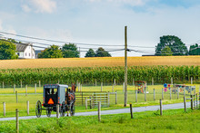 Amish Country Field Agricultur...