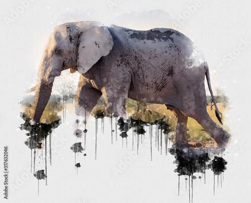 cyfrowe-malarstwo-akwarelowe-elaphant
