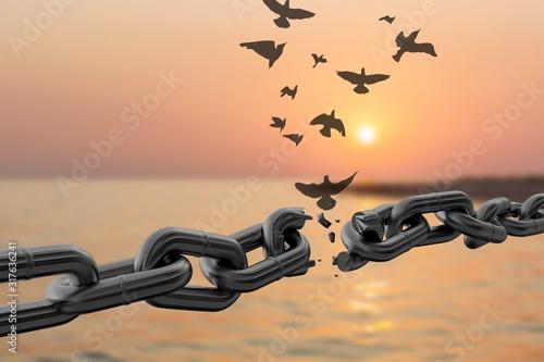 Freedom. Fototapete