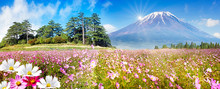 Nice Mountain View With Nice Sky And Flower On The Ground