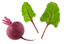 Beetroot Red Root With Green Fresh Leaves Isolated On White Background