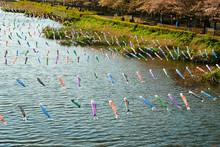 Koinobori, Japanese Carp Streamer Over The River