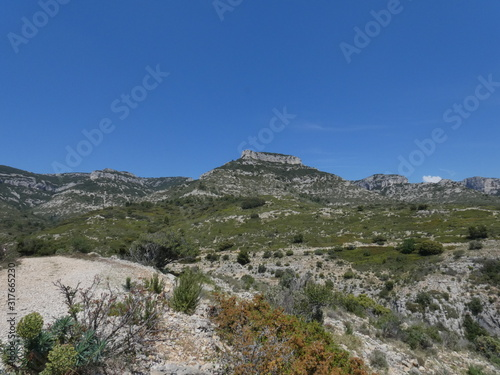 Slika na platnu Photo of a magnificent provencal landscape of mountains where the scrubland and the vegetation extend