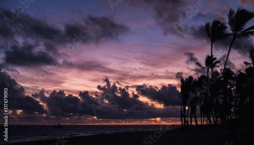 Tropical sunrise over Atlantic Ocean coast #317679093