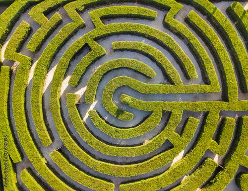 Plakaty zielone  maze-of-bushes-in-botanical-park-ayia-napa-cyprus