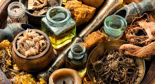 Natural herbs medicine Canvas Print