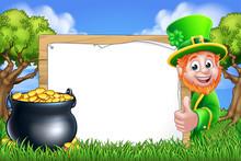 Leprechaun Cartoon Character P...