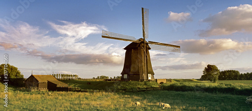 Obraz Dutch windmill - fototapety do salonu