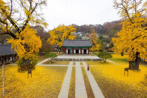 Jeonju Confucian temple in Jeonju, South Korea, filmed with drones Canvas-taulu