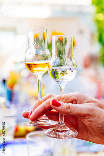 Two grappa glasses with brown and light grappa at a garden party in summer Wallpaper Mural