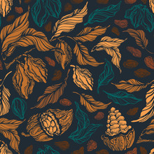 Cacao Seamless Pattern. Vector...