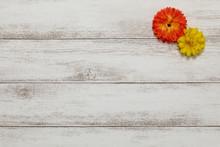 春の花と白い木板の背...