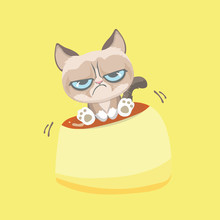 Cute Grumpy Cat Sitting On Pud...