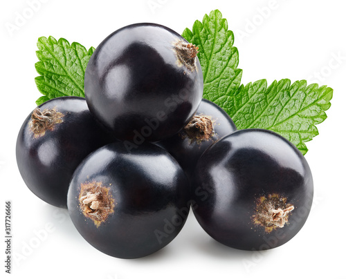 Bunch of black currants fruits with leaf isolated Wallpaper Mural