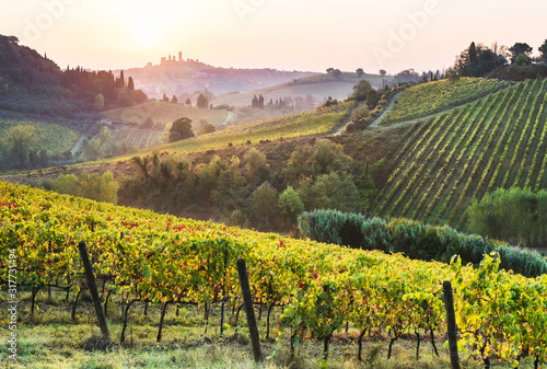 Beautiful valley in Tuscany, Italy Fototapet