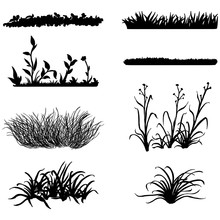Vector Set Of Black Grass Silh...