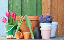 Terracotta Clay Flower Pots With Black Plastic Containers And Garden Tools On Wooden Table On Colorful Bright Rustic Background, Nursery And Gardening Concept, Closeup, Copy Space