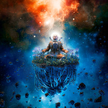 The Cosmic Gardener / 3D Illus...