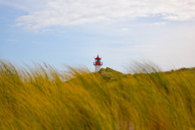 Germany, Sylt, Dune And Dune G...