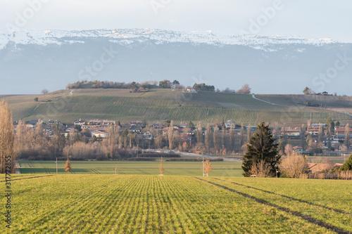 Obraz na plátně rural landscape in switzerland