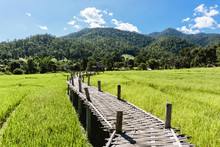 Bamboo Bridge In Pai Thailand....
