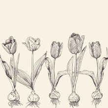 Canvas From A Set Of Tulip In Vintage Style
