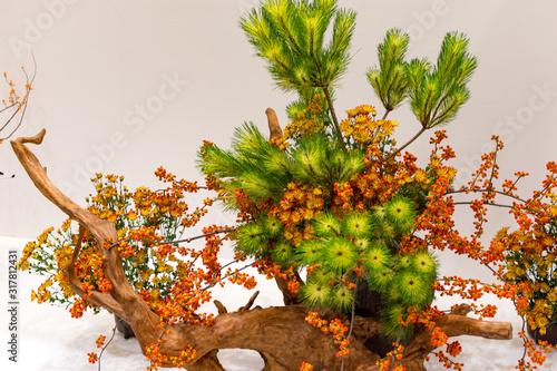 Ikebana Japanese art of flower arrangement Canvas Print