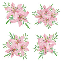 Watercolor Pink Lily Flower Bo...