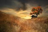 little house on the parairie