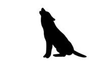 Heulender Wolf Silhouette