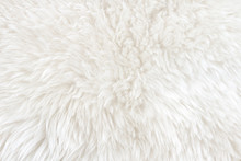 White Real Wool With Beige Top...