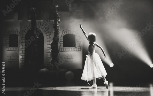 Fotografie, Obraz Photo of a beautiful ballerina in dance pose.