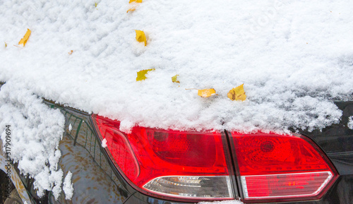 We got our first snow of the season during the night, dusting in the fall with sugar in the winter Canvas Print