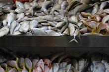 Fresh Fish At Wet Market, Sing...