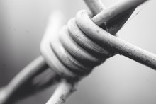 CLOSE-UP OF Barbed Wire