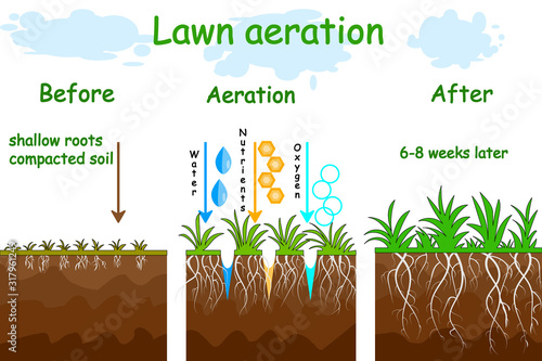 Lawn aeration stage illustration Tablou Canvas