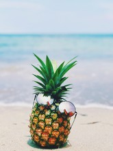 CLOSE-UP OF Pineapple ON BEACH AGAINST SEA