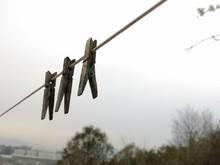 Clothes Peg On Line