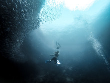 Low Angle View Of Scuba Divers Amidst Fish Swimming In Sea