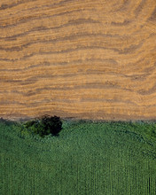 Two Colorful Fields From Above