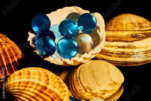 Bolas de perfume al agua sobre conchas marinas. Canvas Print