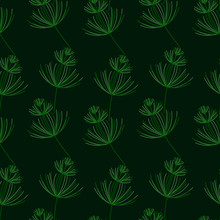 Seamless Botanical Pattern. Horsetail, A Medicinal Plant. Vector Hand-Drawn Background For Surface Design.