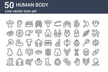 Set Of 50 Human Body Icons. Ou...